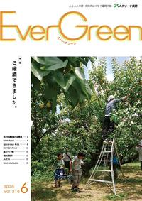 Ever Green 2020年6月号